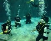 Training at Basildon underwater studios