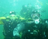 Great diving at Stoney Cove